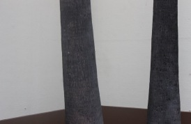 brown _ white palm trees