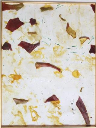 mangobeach (1)