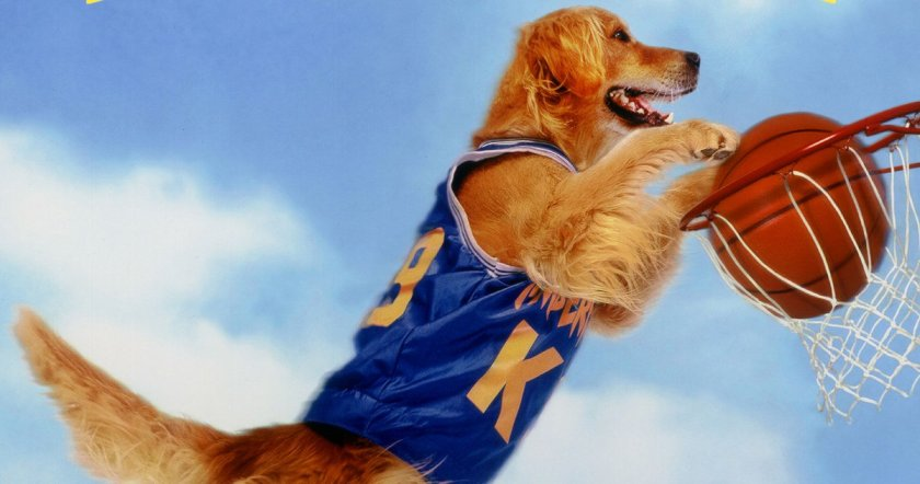 Air-Bud-Director-Charles-Martin-Smith-Doesnt-Like